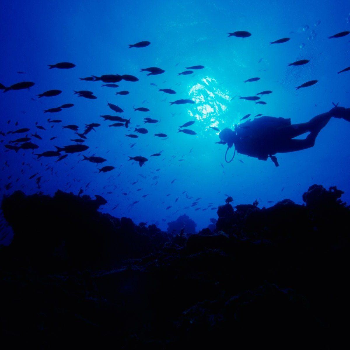 foto-buceador-en-el-fondo-marino