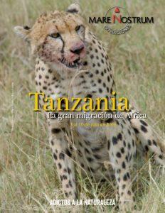MN_Tanzania_2016-zoom-0