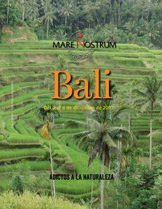 portadas_Bali